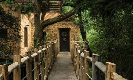 Man Fulfills His Childhood Dream Of Building A Luxurious Treehouse. Wait Till You Look Inside!