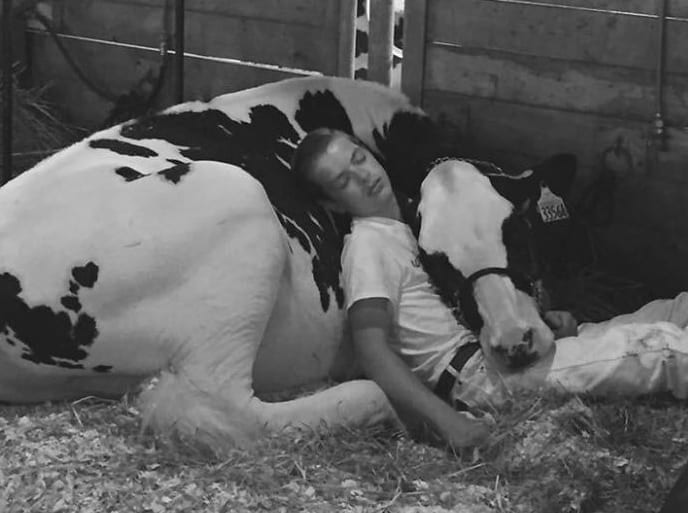 Father Captures Precious Moment When 15-Year-Old Son And His Cow Are Napping After Losing Competition